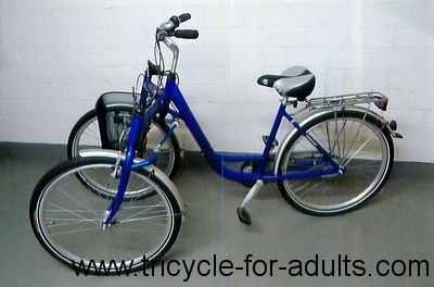 Tricycle for adults Trisalu Pegasus 26 ""